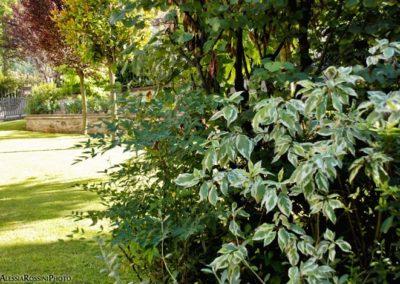 Balsamini Giardinieri - Giardini (12)