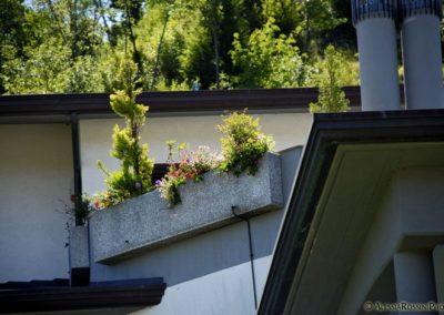 Balsamini Giardinieri - Giardini (26)