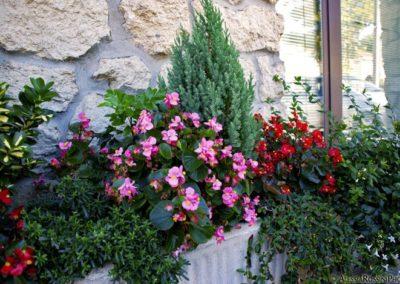 Balsamini Giardinieri - Giardini (29)