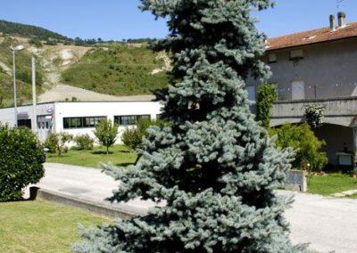 Balsamini Giardinieri - Giardini (33)