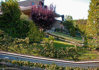 Balsamini Giardinieri - Giardini (8)