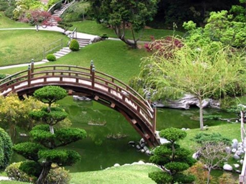 Balsamini-giardinieri-Realizzazione-giardini