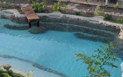 Progettazione di una piscina interrata naturale