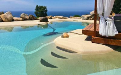 La funzione dello skimmer per la purificazione dell'acqua della piscina naturale